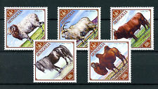 Mongolia 2016 MNH Male Farm Animals Camels Goats Sheep Horses Cows 5v Set Stamps