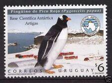 Antarctic bird penguin scientific base Antarctica URUGU