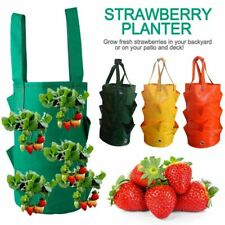 Garden Hanging Planter Grow Bag Fruit Plant Pouch Tomato Strawberry Flower Bags