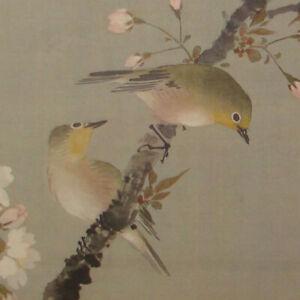 Cherry Blossoms with Birds by Oda Kaisen 小田海僊 | Print  #1004