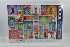 M49B3 Eurographics 1000-Piece Yoga Dogs Puzzle | New & Sealed