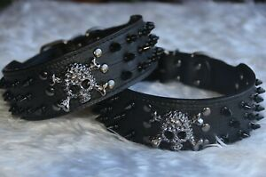 Black Dog Leather Collar Spiked & Studded Adjustable Dog Collar Skull Dog Collar