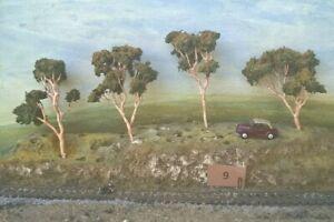AUSTRALIAN MODEL GUM TREES  HO  OO  Lot 009