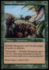 MTG NIMBLE MONGOOSE - MANGUSTA AGILE POOR/MOLTO ROVINATA - OD - MAGIC
