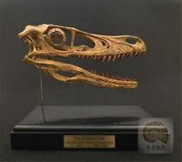 29 CM\uff0cDilophosaurus Model  Dinosaur Skull Model SJL-2020