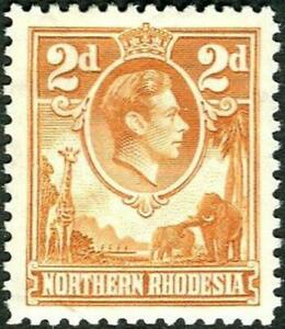 Northern Rhodesia 1938-52  2d Yellow-Brown   SG.31 Mint (Hinged)     Cat:£50