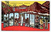 Mid-1900s Greetings from Scenic Northwest LARGE LETTER Postcard