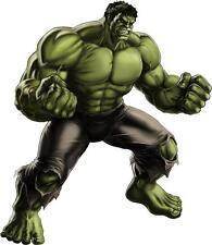"Hulk,Incredible Hulk,Logo,Heat Transfer,Iron On(8.25""x 9.5"")"