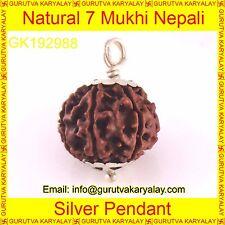 Mantra Siddha Natural Sat Mukhi 7 Seven Face Rudraksh In Silver Pendant 21-22 MM