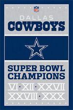 Dallas Cowboys Super Bowl Champions Poster Art Print T6758
