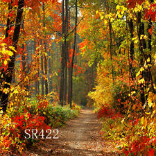 10x10 FT CP (COMPUTER PRINTED) PHOTO SCENIC BACKGROUND BACKDROP SR422