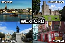 SOUVENIR FRIDGE MAGNET of WEXFORD IRELAND