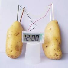 Electricity Science Project For Kid Home Experiment Kit Potato Clock School Lab