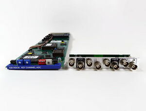 Snell & Wilcox IQD1ADCK A to D Converter Card with Backplane