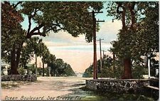 1910s Postcard Ocean Boulevard Sea Breeze FL Daytona Beach Street View Blvd