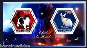 Chad 2014 MNH SS, Hexagon Odd Unusual Shape Stamps, Cats, Pets