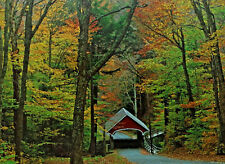 jigsaw puzzle 1000 pc HOYLE autumn country covered bridge forest