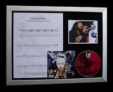 KORN Coming Undone GALLERY QUALITY MUSIC CD FRAMED DISPLAY+EXPRESS GLOBAL SHIP