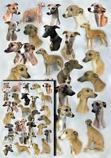 Whippet Dog Gift Wrapping Paper By Starprint - Auto combined postage