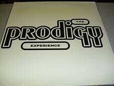 Prodigy - Experience - 2LP Vinyl /// Neu & OVP