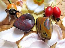 245-lot de 2 jaspes hématoïde oeil de fer-Epuisement-Manque de fer
