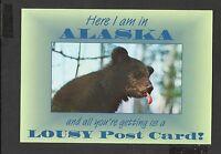 Alaska Joe Colour Postcard Here I am in  Alaska  unposted