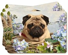 Fawn Pug Dog in a Basket Picture Placemats in Gift Box, AD-P96P