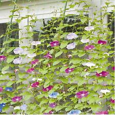 Use Net Trellis Bean Green Nylon Fence Plant Support Climbing 1.8x3.6m Netting