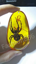 Beautiful Amber Plants Insects Characteristics Spider Necklace Pendant