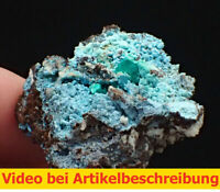 7562 Chalkophyllit chalcophyllite  ca 3,5*3,5*2 cm Gengma  China 2014 Movie
