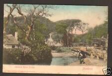 AFRIQUE du SUD : MOWBRAY ,AUTOBUS sur PONT avant 1904