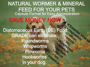 Natural WORMER 4 Dogs/Rabbits/Cats/ Wormer Worm Control Easy & Fast Acting Caps