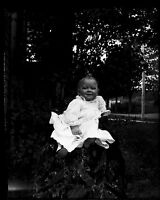 Antique 4x5 Glass Plate Negative Portrait of a Young Child in a Garden (V4425)