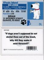 Rhode Island FAMILY GUY BRIAN Collectible card Drivers License fake id card