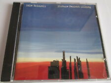 CD - EDIE BRICKELL - PICTURE PERFECT MORNING - 1994