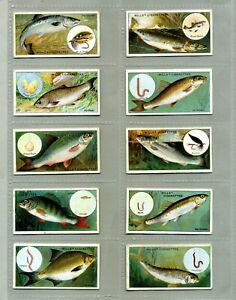 WD & HO Wills Fish & Bait Complete Set 50 Cards Issued 1910