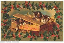 Chat. Noël. Gaufré. Cpm. 1982. Cat. Christmas. Embossed. Year 1982