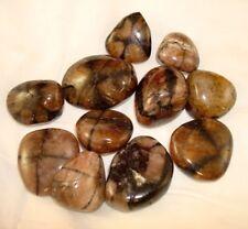 Premium Chiastolite Tumbled Stone Chiastolite Specimen 1/2 lbs Reiki Chakra Heal