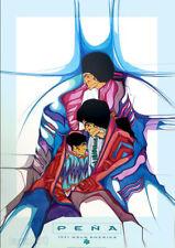 Amado PENA 1991 Familia de Hoy Walk America Native American Poster