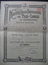 Miniere Belge Bresilienne de Tres Cruzes  1901