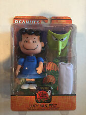 Its The Great Pumpkin Charlie Brown Lucy Van Pelt Witch Mask & Costume 2005