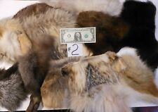 12 Fur Critter pieces #2