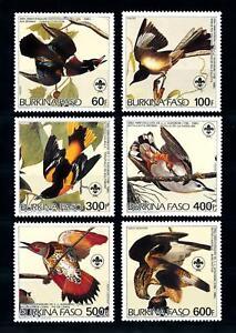 [93795] Burkina Faso 1985 Birds Vögel Oiseaux Audubon Scouting  MNH