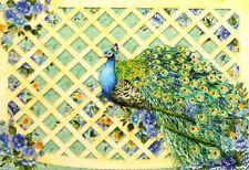 pUNCH sTUDIO Set of 10 Die-Cut Blank Note Cards Window Box - Lattice Peacock
