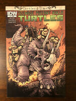 Teenage Mutant Ninja Turtles Turtles In Time # 1 TMNT Cover A IDW 2014