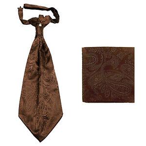 New men's polyester ASCOT cravat neck tie & hankie set Brown Paisley prom