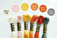 New DMC Floss Autumn Rainbow 6 Skeins - Free Shipping!!