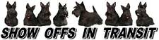 SCOTTISH TERRIER Show Off Car Sticker By Starprint