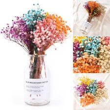 Mini Gypsophila Bouquet Natural Dried Flowers DIY Home Wedding Party Decoration