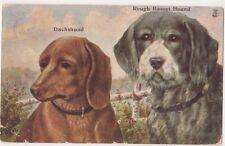 Dachshund & Rough Basset Hound, Kennel Series Art Postcard, B720